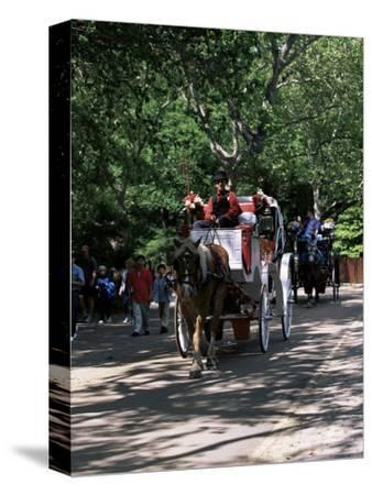 Horse Drawn Carriage in Central Park, Manhattan, New York, New York State, USA-Yadid Levy-Stretched Canvas Print