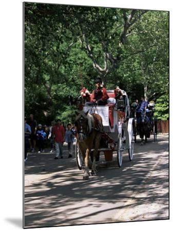 Horse Drawn Carriage in Central Park, Manhattan, New York, New York State, USA-Yadid Levy-Mounted Photographic Print