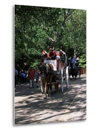 Horse Drawn Carriage in Central Park, Manhattan, New York, New York State, USA-Yadid Levy-Metal Print