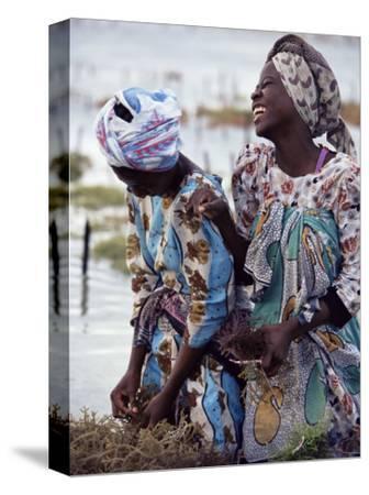 Two Smiling Zanzibari Women Working in Seaweed Cultivation, Zanzibar, Tanzania, East Africa, Africa-Yadid Levy-Stretched Canvas Print