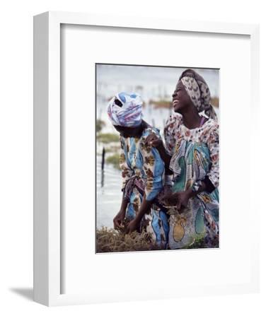 Two Smiling Zanzibari Women Working in Seaweed Cultivation, Zanzibar, Tanzania, East Africa, Africa-Yadid Levy-Framed Photographic Print