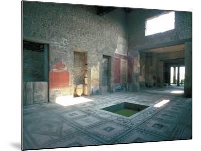 Politician's House, Pompeii, Campania, Italy-Christina Gascoigne-Mounted Photographic Print