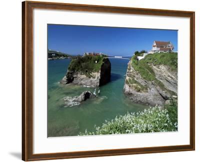 The Island off Towan Beach, Newquay, Cornwall, England, United Kingdom-Robert Francis-Framed Photographic Print
