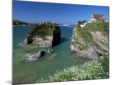 The Island off Towan Beach, Newquay, Cornwall, England, United Kingdom-Robert Francis-Mounted Photographic Print