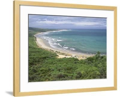 Coast of the Angahook-Lorne State Park, West of Anglesea, on Great Ocean Road, Victoria, Australia-Robert Francis-Framed Photographic Print
