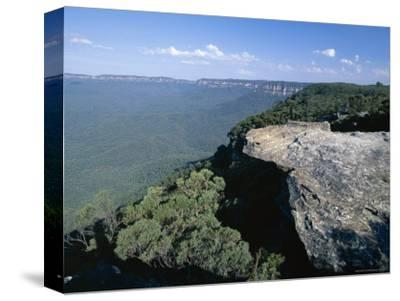 Eucalyptus Oil Haze Causes the Blueness in the View in the Blue Mountains National Park-Robert Francis-Stretched Canvas Print