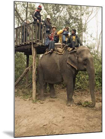 Japanese Tourists Board the Elephant That Will Take Them on Safari-Don Smith-Mounted Photographic Print