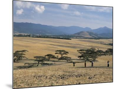 Acacia Trees on High Grasslands in Front of Bale Mountains, Southern Highlands, Ethiopia, Africa-Tony Waltham-Mounted Photographic Print