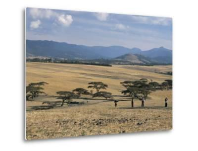 Acacia Trees on High Grasslands in Front of Bale Mountains, Southern Highlands, Ethiopia, Africa-Tony Waltham-Metal Print