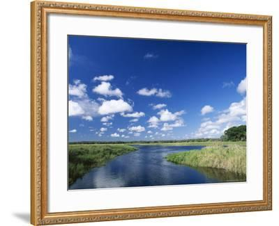 View from Riverbank of White Clouds and Blue Sky, Myakka River State Park, Near Sarasota, USA-Ruth Tomlinson-Framed Photographic Print