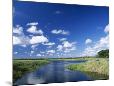 View from Riverbank of White Clouds and Blue Sky, Myakka River State Park, Near Sarasota, USA-Ruth Tomlinson-Mounted Photographic Print
