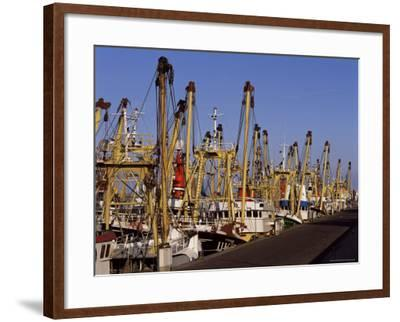 Fishing Fleet, Den Helder, Holland-I Vanderharst-Framed Photographic Print