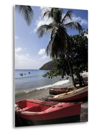 Beach, Les Salines, Martinique, French Antilles, West Indies, Central America-Guy Thouvenin-Metal Print