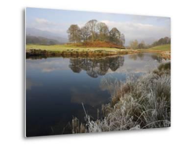 River Brathay in Winter, Near Elterwater, Lake District, Cumbria, England, United Kingdom-Steve & Ann Toon-Metal Print