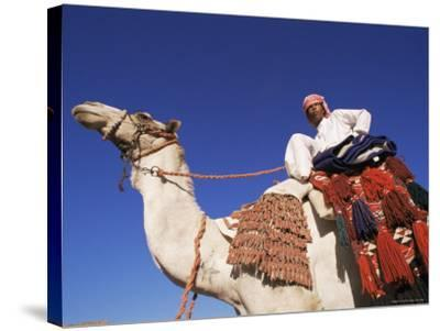 Bedouin Riding Camel, Sinai, Egypt, North Africa, Africa-Nico Tondini-Stretched Canvas Print