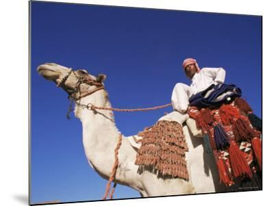 Bedouin Riding Camel, Sinai, Egypt, North Africa, Africa-Nico Tondini-Mounted Photographic Print