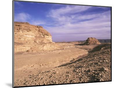 The Sinai Desert, Egypt, North Africa, Africa-Nico Tondini-Mounted Photographic Print