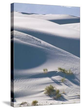 White Sands Desert, New Mexico, USA-Adam Woolfitt-Stretched Canvas Print