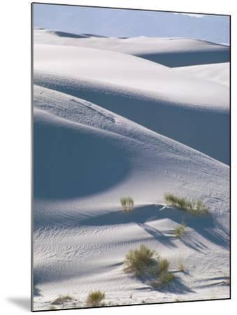 White Sands Desert, New Mexico, USA-Adam Woolfitt-Mounted Photographic Print