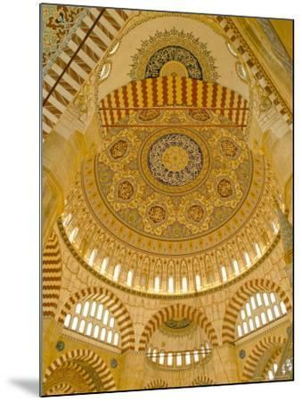 Interior of the Selimiye Mosque, Edirne, Anatolia, Turkey-Adam Woolfitt-Mounted Photographic Print