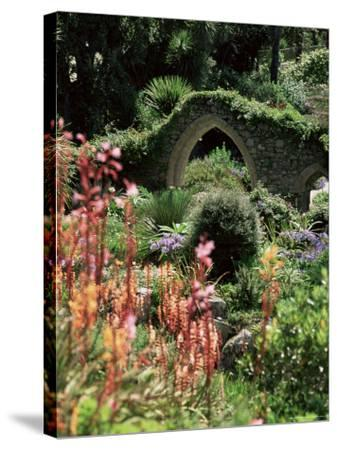 Abbey Gardens, Tresco, Isles of Scilly, United Kingdom-Adam Woolfitt-Stretched Canvas Print