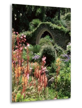 Abbey Gardens, Tresco, Isles of Scilly, United Kingdom-Adam Woolfitt-Metal Print