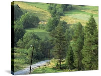 Lane Near the Polish Border, Near Zdiar, High Tatras, Slovakia-Upperhall-Stretched Canvas Print