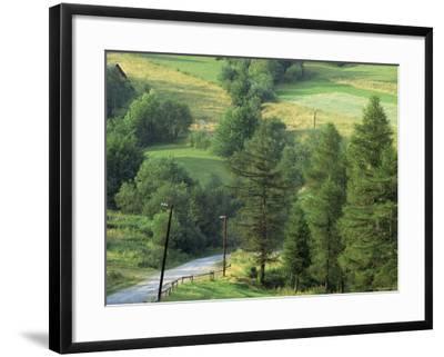 Lane Near the Polish Border, Near Zdiar, High Tatras, Slovakia-Upperhall-Framed Photographic Print
