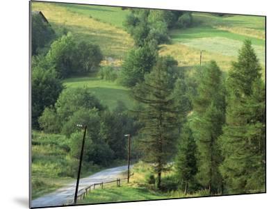 Lane Near the Polish Border, Near Zdiar, High Tatras, Slovakia-Upperhall-Mounted Photographic Print