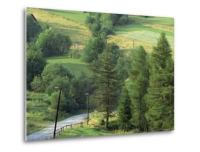 Lane Near the Polish Border, Near Zdiar, High Tatras, Slovakia-Upperhall-Metal Print