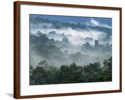 Rain Forest, from Lubaantun to Maya Mountains, Belize, Central America-Upperhall-Framed Photographic Print