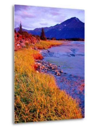 Low Tide at Turnagain Arm, Cook Inlet, Seward Scenic Highway, Seward, Alaska-Richard Cummins-Metal Print