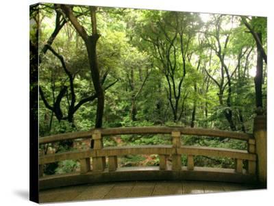 Bridge and Garden at Yoyogi-Koen, Tokyo, Kanto, Japan-Greg Elms-Stretched Canvas Print