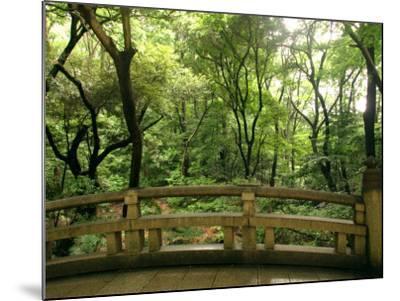 Bridge and Garden at Yoyogi-Koen, Tokyo, Kanto, Japan-Greg Elms-Mounted Photographic Print