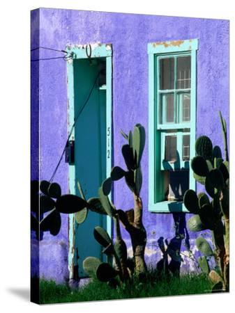 Cacti Outside Adobe House in Historic District, Tucson, Arizona-David Tomlinson-Stretched Canvas Print