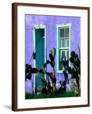 Cacti Outside Adobe House in Historic District, Tucson, Arizona-David Tomlinson-Framed Photographic Print