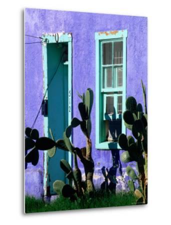 Cacti Outside Adobe House in Historic District, Tucson, Arizona-David Tomlinson-Metal Print