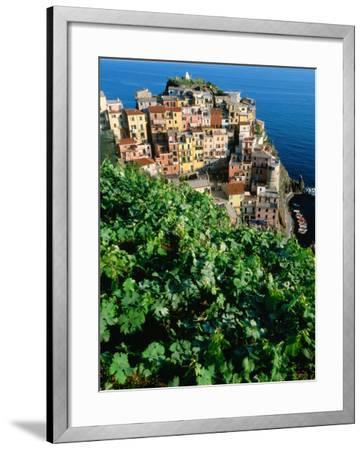 Manarola Town from Above, Cinque Terre, Liguria, Italy-John Elk III-Framed Photographic Print