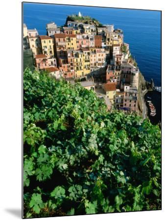 Manarola Town from Above, Cinque Terre, Liguria, Italy-John Elk III-Mounted Photographic Print