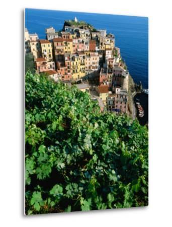 Manarola Town from Above, Cinque Terre, Liguria, Italy-John Elk III-Metal Print