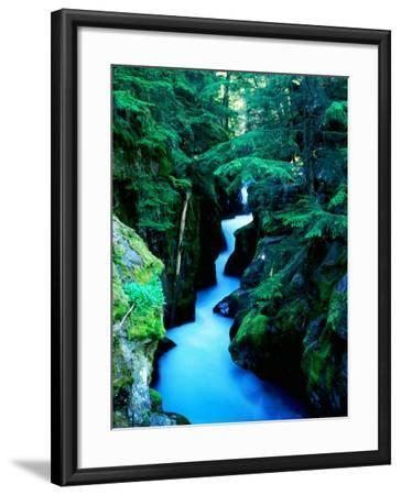 Water Rushing through Avalanche Creek Gorge, Glacier National Park, Montana-Holger Leue-Framed Photographic Print