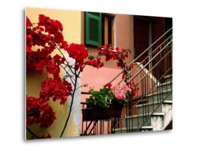 Flowers and Painted Houses in Town in Cinque Terre, Manarola, Liguria, Italy-Diana Mayfield-Metal Print