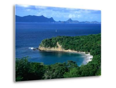 Anse la Roche Beach, Carriacou, Carriacou and Petit Martinique, Grenada-Margie Politzer-Metal Print