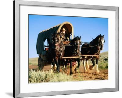 Mormon Man Driving Horse Carriage, Mormon Pioneer Wagon Train to Utah, Near South Pass, Wyoming-Holger Leue-Framed Photographic Print