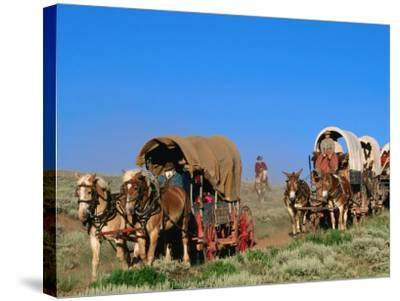Mormons on Horse Carriages, Mormon Pioneer Wagon Train to Utah, Near South Pass, Wyoming-Holger Leue-Stretched Canvas Print