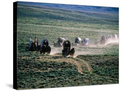 Dusty Horse Carriage Trek, Mormon Pioneer Wagon Train to Utah, Near South Pass, Wyoming-Holger Leue-Stretched Canvas Print