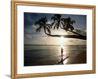 Sunset Silhouette on Turtle Beach, Mullins Bay, St Peter-Holger Leue-Framed Photographic Print