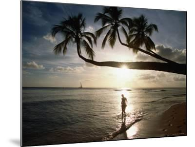 Sunset Silhouette on Turtle Beach, Mullins Bay, St Peter-Holger Leue-Mounted Photographic Print