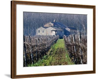 Winery Vines and Buildng, Torgiano, Umbria, Italy-Oliver Strewe-Framed Photographic Print