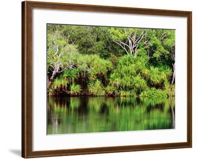 Mardugal Billabong, Kakadu National Park, Northern Territory, Australia-John Banagan-Framed Photographic Print
